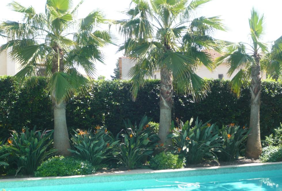 Villa au cap d 39 antibes mirot jardins entreprise d for Entretien piscine nice